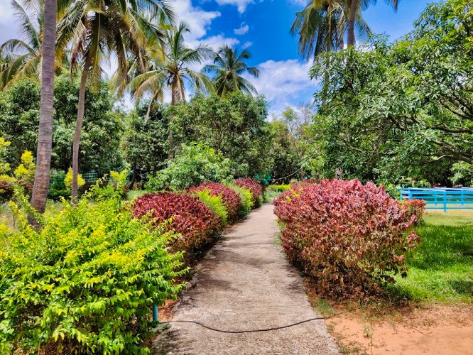 Garden resorts near Bangalore