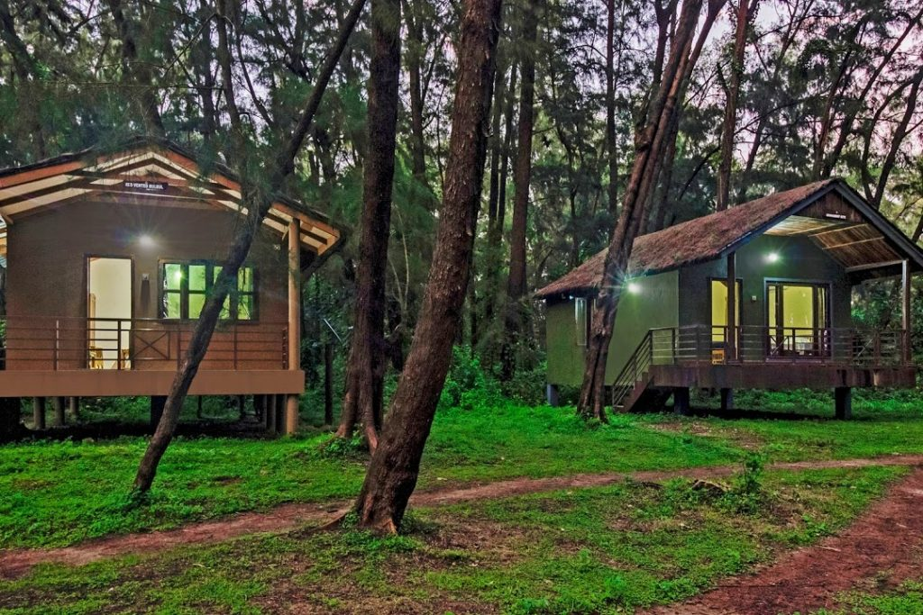 luxury Corporate team outing resort in Bandipur