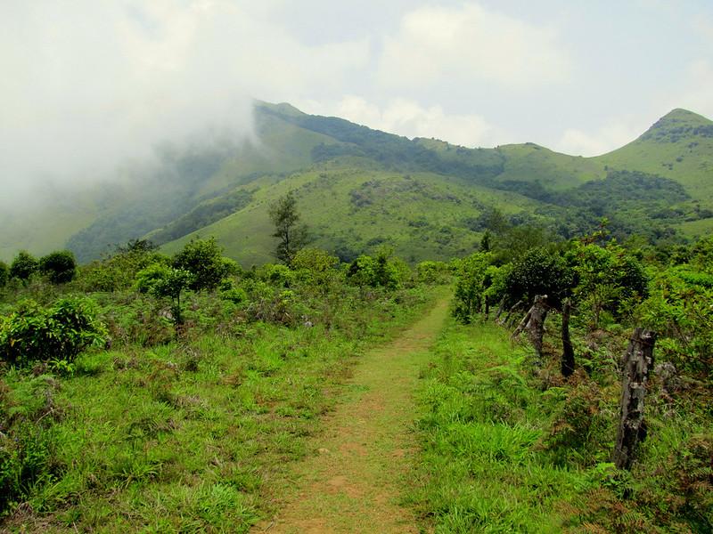 Thadiyandamol South Coorg